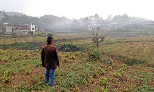 Hu Jihua Head Of Lequn Village Surveys The Land Worked By Members Of The Local Cooperative This
