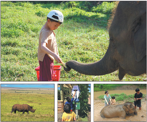 Clockwise From Top In A Trip Organized By Qyer Chinese Parents And Children Can Encounter