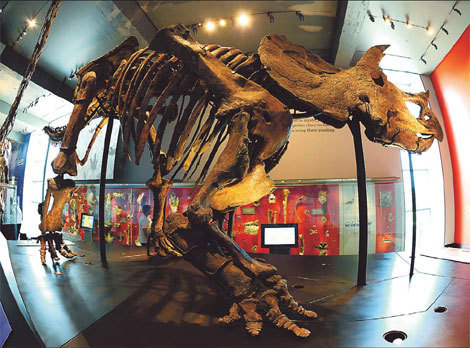The FIRSTS: The cause(s) of dinosaur extinction